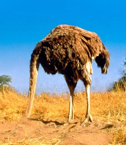 We can be like an ostrich sticking its head in the sand when we do not want to address certain realities.