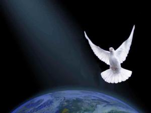dove over the earth