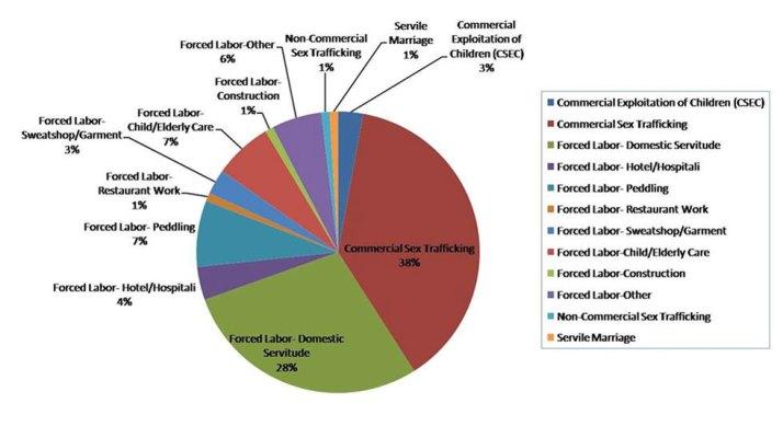 pie of human-trafficking-statistics